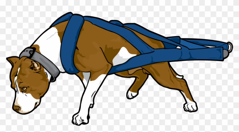 Pit Bull Awareness Clipart - Pitbull Weight Pulling Vector #322280