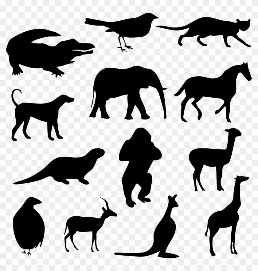 Medium Image - Transparent Animal Silhouettes Png #322354