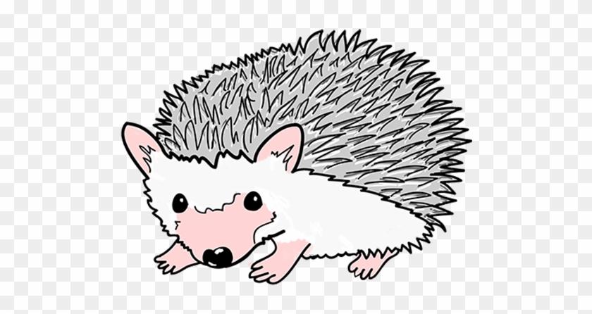 Mascot Porcupine Blurb Mascot Porcupine - Pet Store #323063