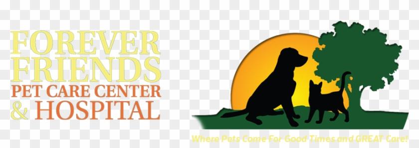Forever Friends Pet Care Center - Forever Friends Pet Care Center & Hospital #323571