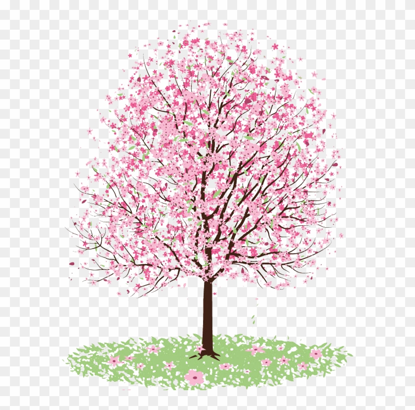 Related Categories - Cherry Blossom Tree Coloring #324016