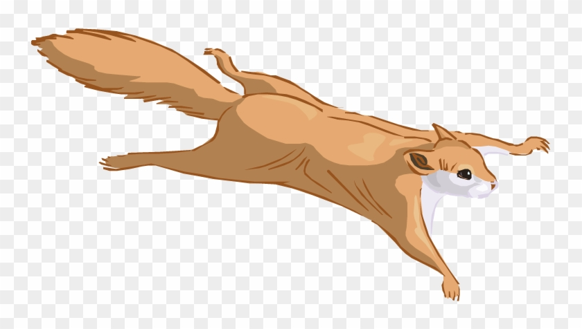 Flying Squirrel Clipart Wing - Flying Squirrel Clipart #325078