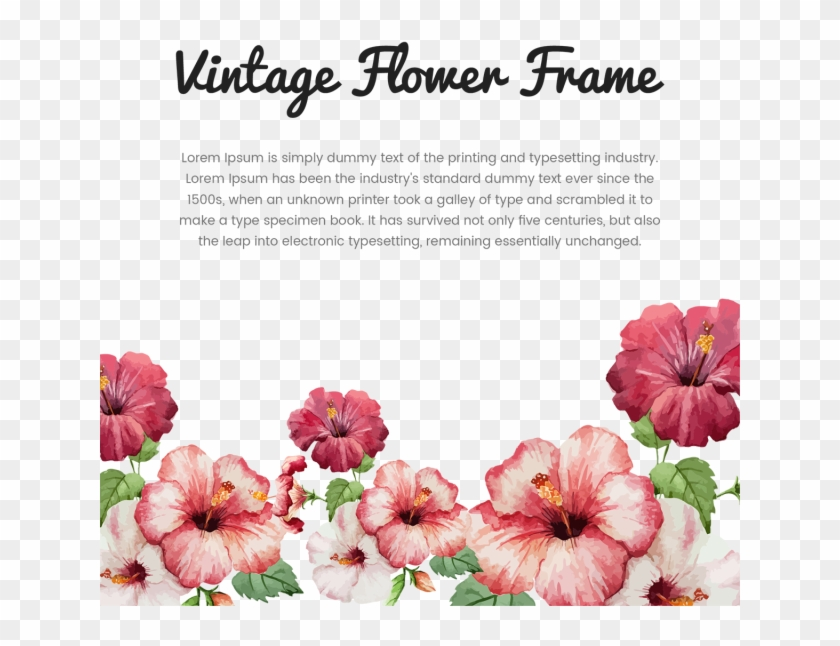 Vintage Flower Frame With Typography, Vintage, Flower, - Hibiscus Flower  Drawing #325439