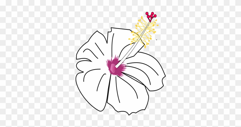 Hibiscus Flower Template 5 Buy Clip Art Drawing Free