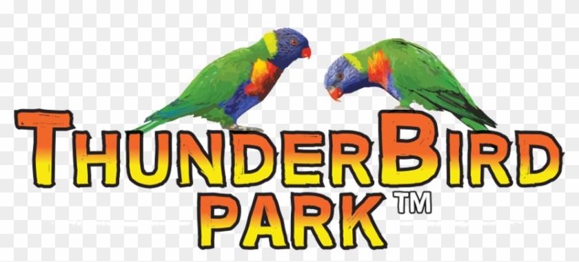 Thunderbird Park Logo #326969
