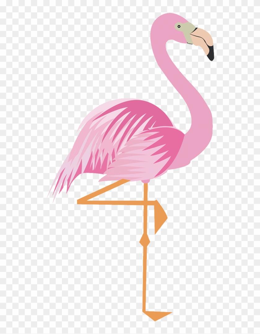 Greater Flamingo Drawing Cartoon - Imagem De Flamingo Para Imprimir #329019