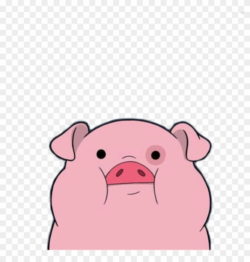 tumblr pig cute cutepig reaction wallpaper animal anime pigtumblr