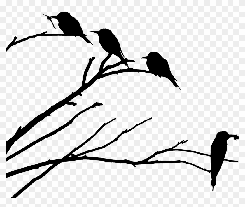 Big Image - Bird On Branch Silhouette Png #329431