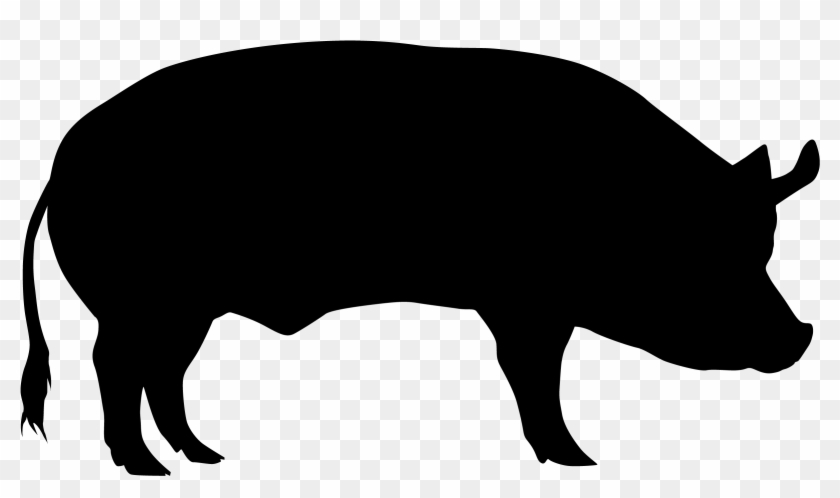 Domestic Pig Cattle Sheep Silhouette - Pig Transparent ...