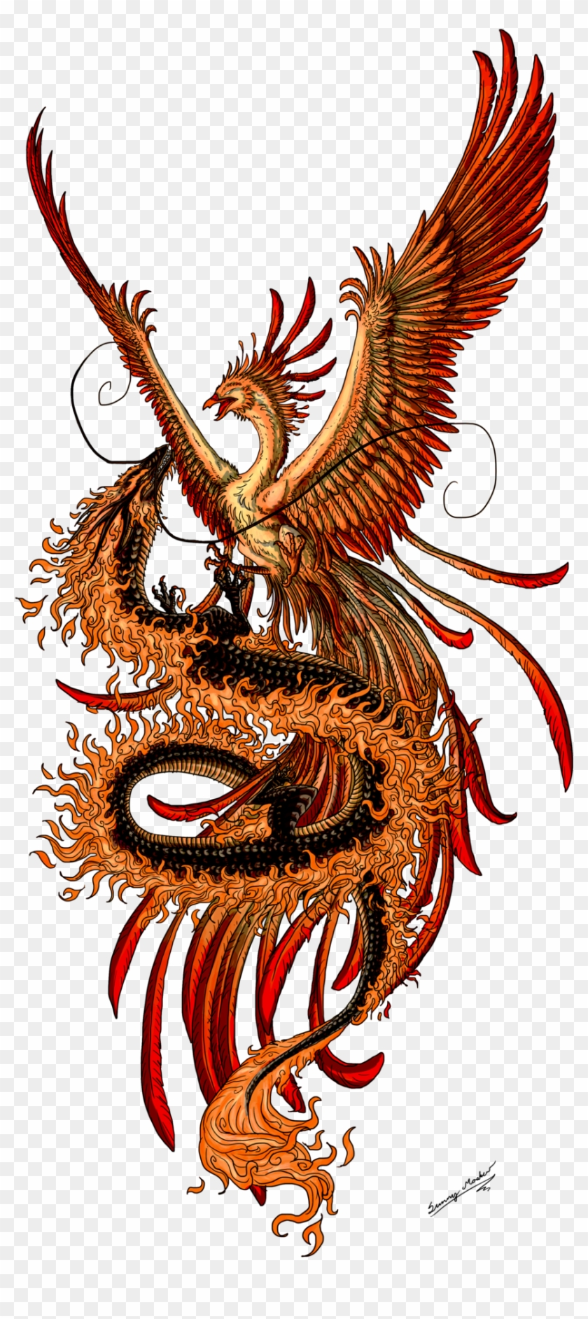 Phoenix Tattoo Design Picture - Phoenix And Dragon #330269