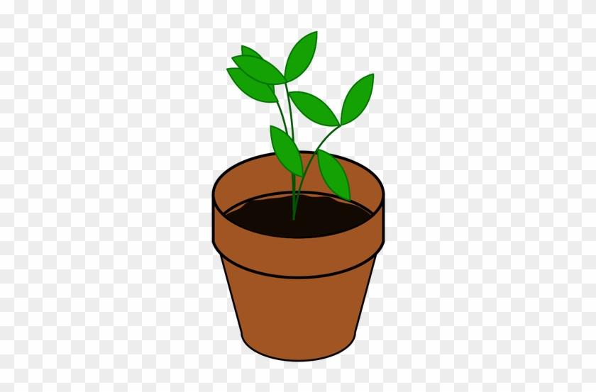 Vector De La Imagen De Sencilla Planta En Una Maceta - Im Not Old I Just Need Re-potting Round Ornament #330607