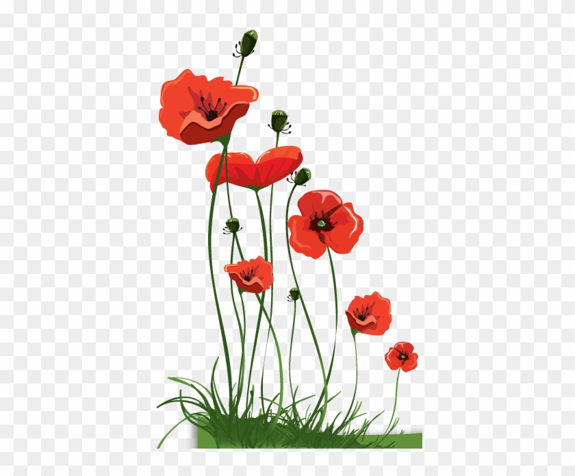 Undercover Of Lightness Anzac Day Poppies Free Transparent Png Clipart Images Download