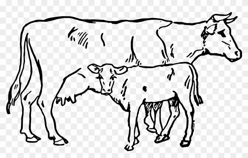 Open Cow Clipart Black And White Free Transparent Png