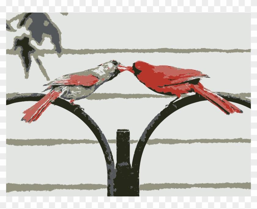 Love Birds - Northern Cardinal #333441