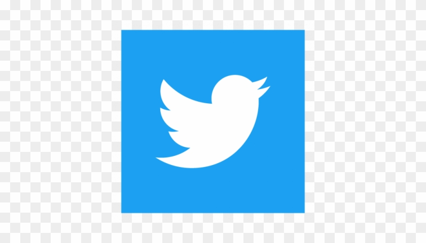 Twitter Square Logo Png #333677