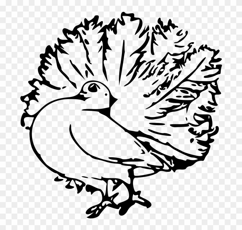 Black And White Clip Art Feathered Animals