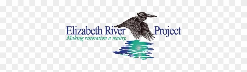 Elizabeth River Project - Elizabeth River Project #335264