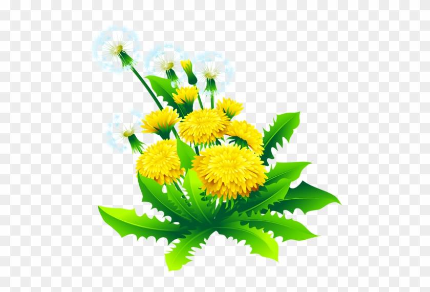 Tubes Nature - Album Design Flower Png #335346