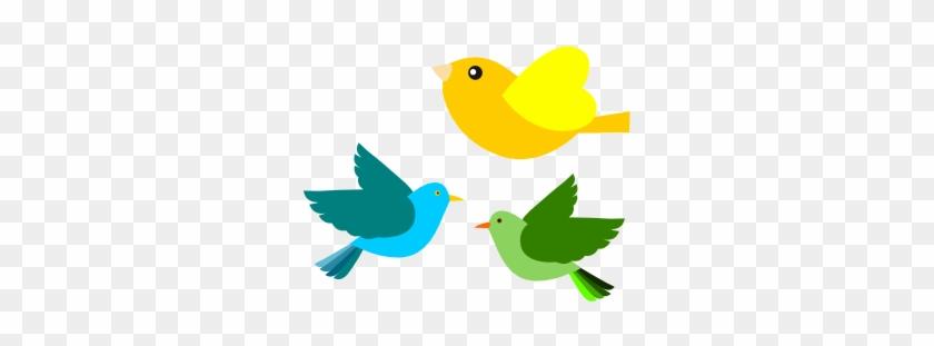 Book Passarinho Birds 13 - Spring Birds Clipart #335580