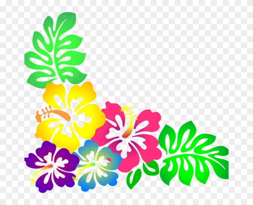 Luau Images Free Flower Hawaii Hibiscus Vector