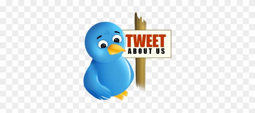 Network,social,sn - Twitter Bird #336202