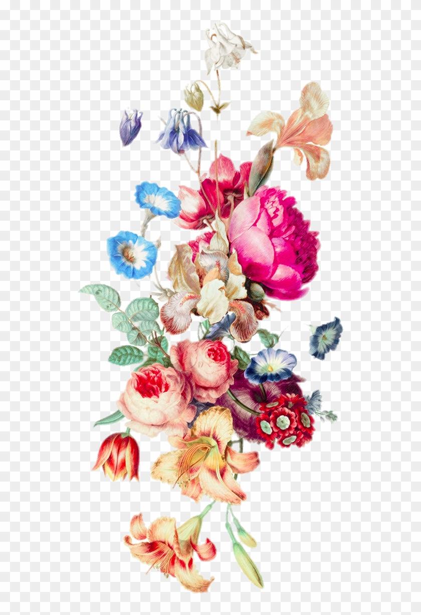 Iphone 6 Plus Floral Design Cut Flowers Flower Bouquet Big Address