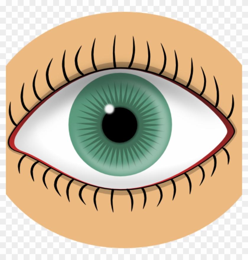 Eye Images Clip Art Blue Eye Clip Art At Clker Vector - Eye Clip Art #339273