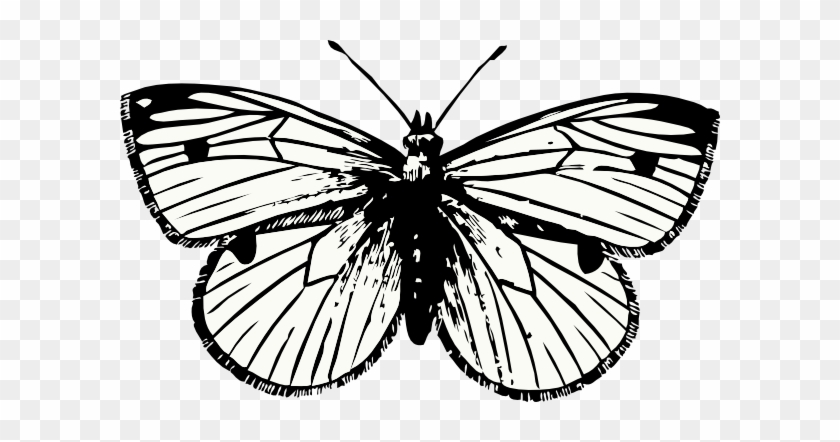 Butterfly Tattoo Png #342431