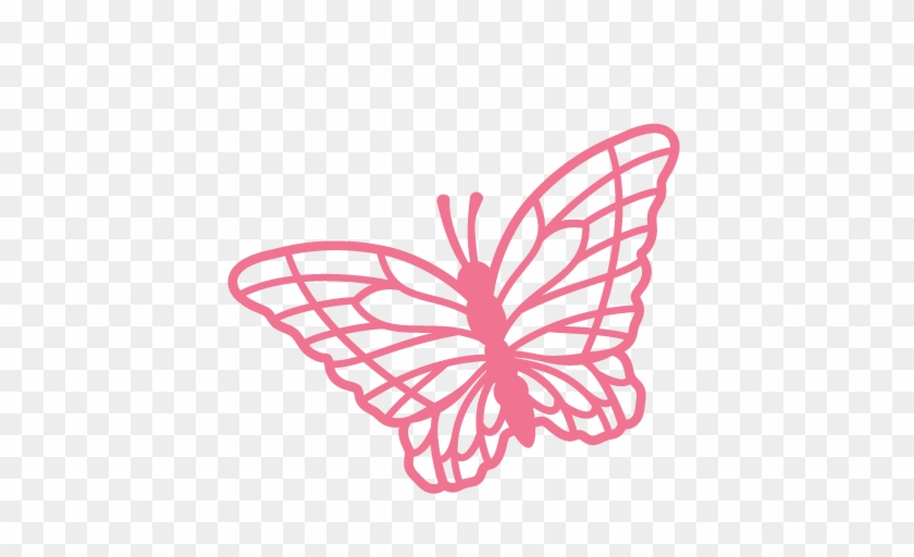 butterfly svg scrapbook cut file cute clipart files free butterfly