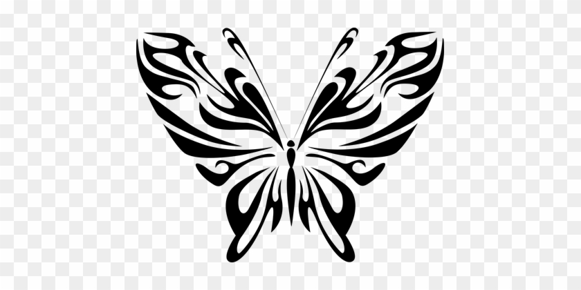 Abstract Animal Black Butterfly Fly Insect - Butterfly Line Art Png #343081