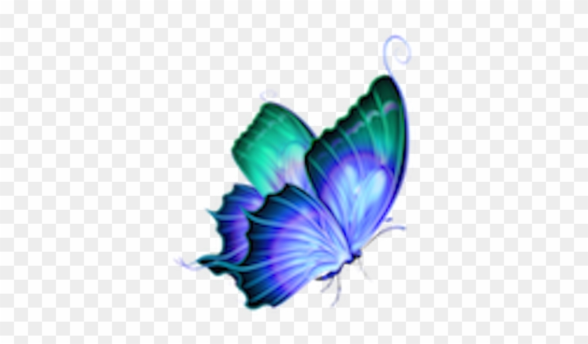 Psychic Readings By Nancy Feranec Butterfly Png Hd For