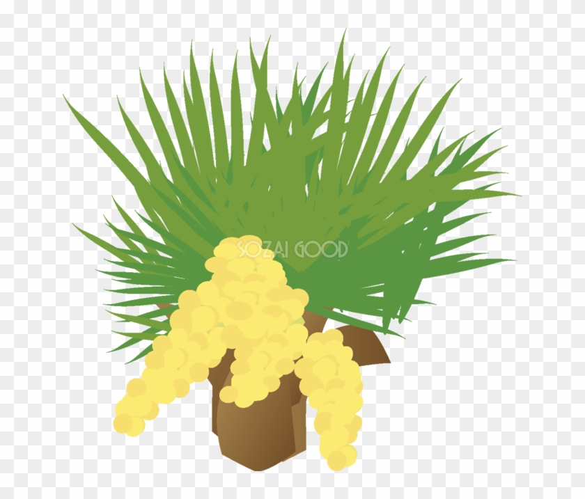 棕櫚 花の無料イラスト春4月 5月67054 Illustration Free