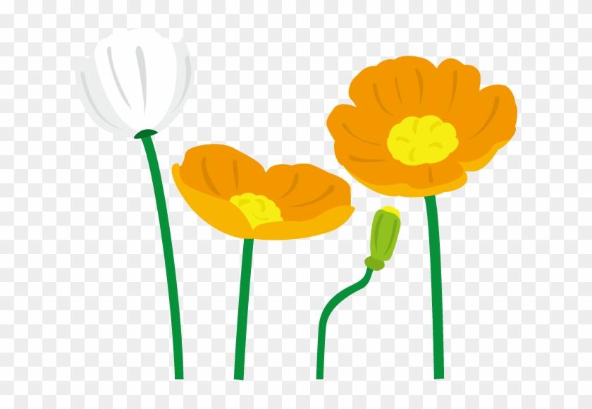 春の花1 03 ポピーイラスト 花 ポピー イラスト Free Transparent