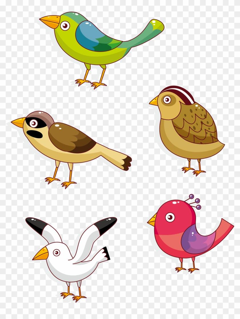 Lovebird Parrot Owl Cartoon - Birds Pictures In Cartoon #349182