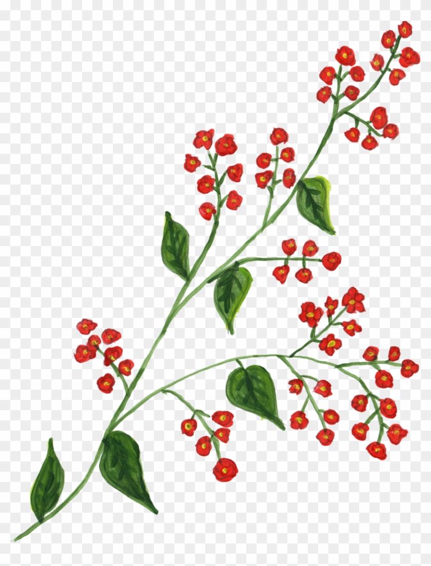 1039 × 1408 Px - Leaf Paint Png #349849