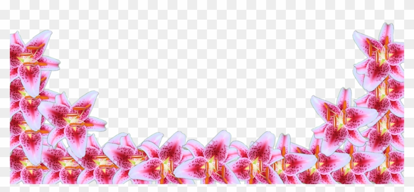 Flower border line 15 buy clip art transparent pink flower border flower border line 15 buy clip art transparent pink flower border mightylinksfo