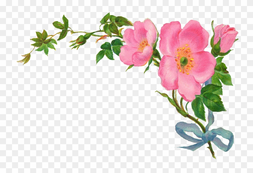 Country Vintage Floral Clipart - Vintage Flower Border Png