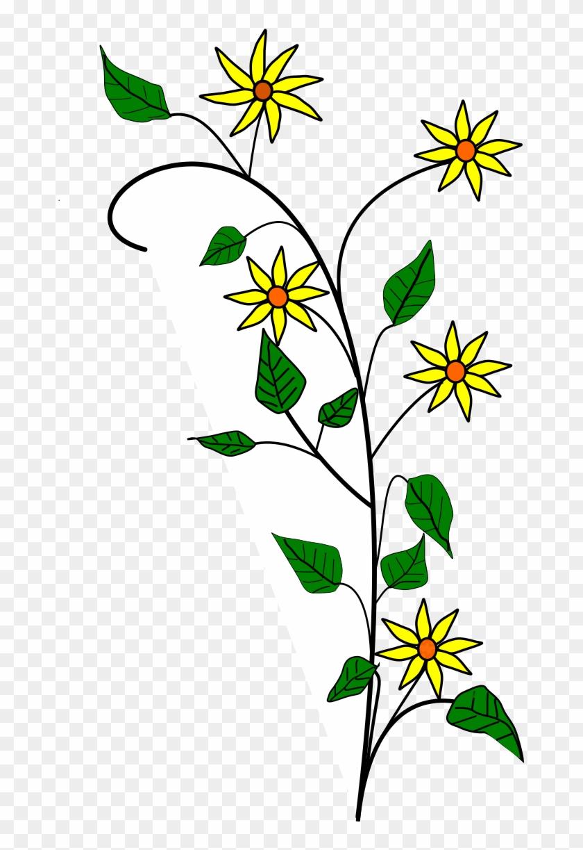 Edelweiss Flower Tattoo