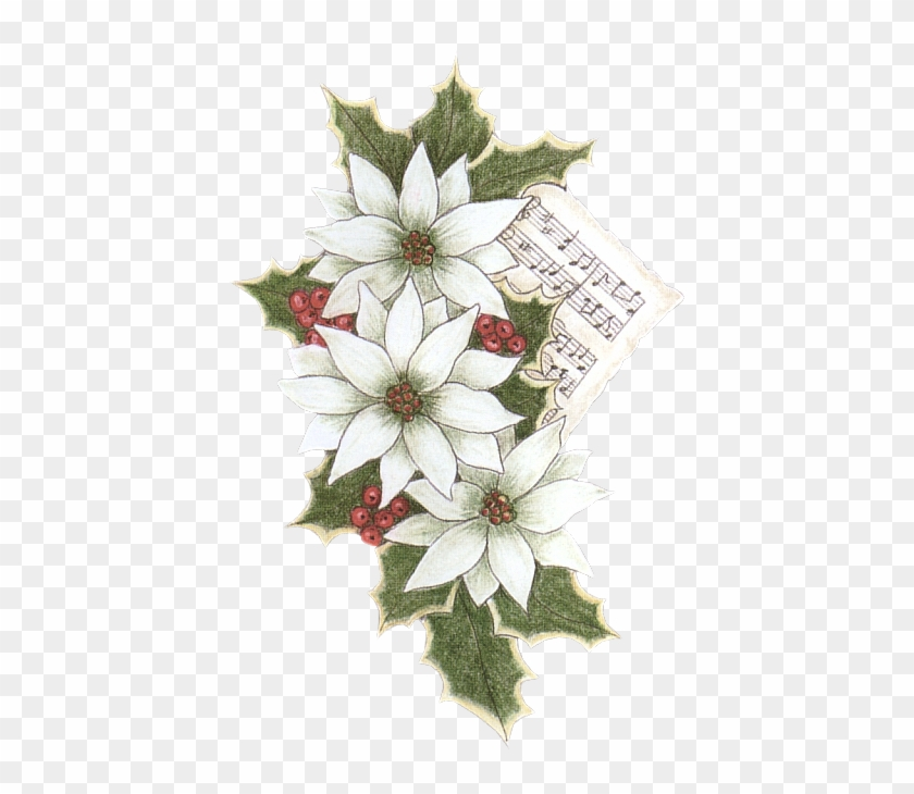 Christmas Clipart - Flannel Flower #351680