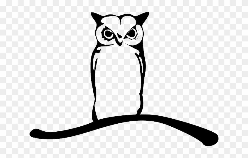 branch owl owlet eagle owl animal bird twig branch vector burung hantu free transparent png clipart images download branch owl owlet eagle owl animal
