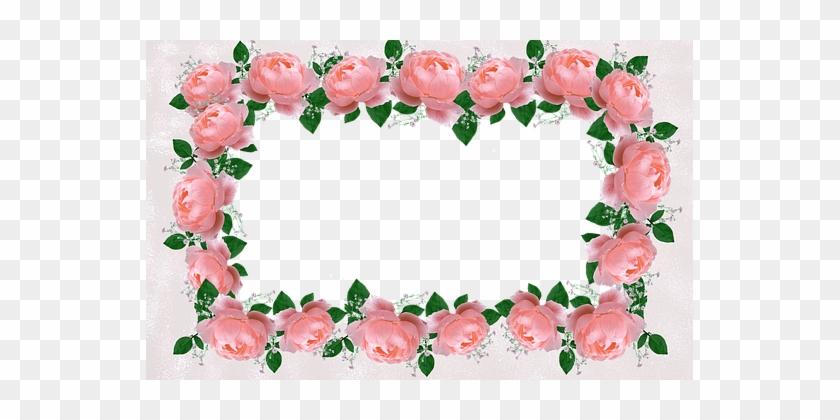 Frame, Border, Decorative, Floral, Roses - Flower Peach Frame Png #352203