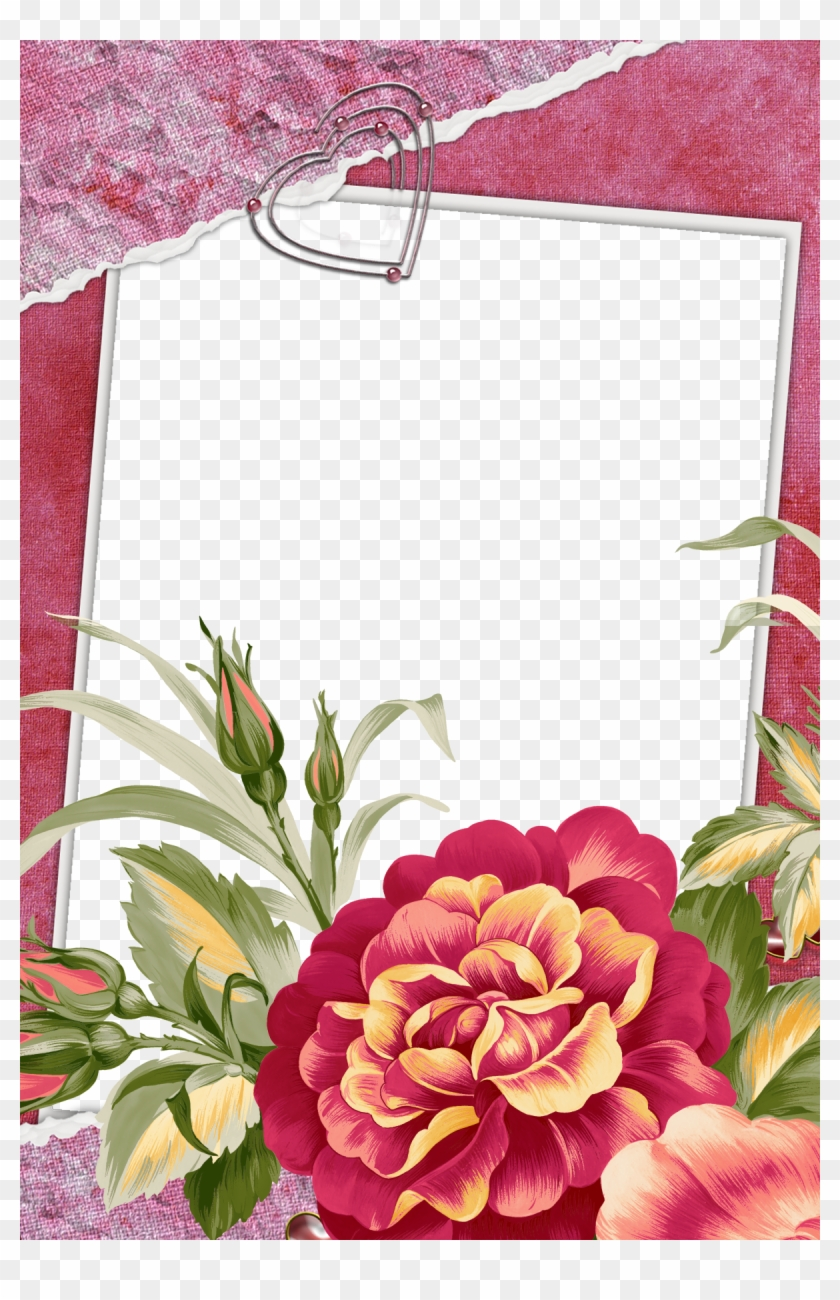 Large red transparent frame with beautiful flower beautiful flower large red transparent frame with beautiful flower beautiful flower photo frames izmirmasajfo