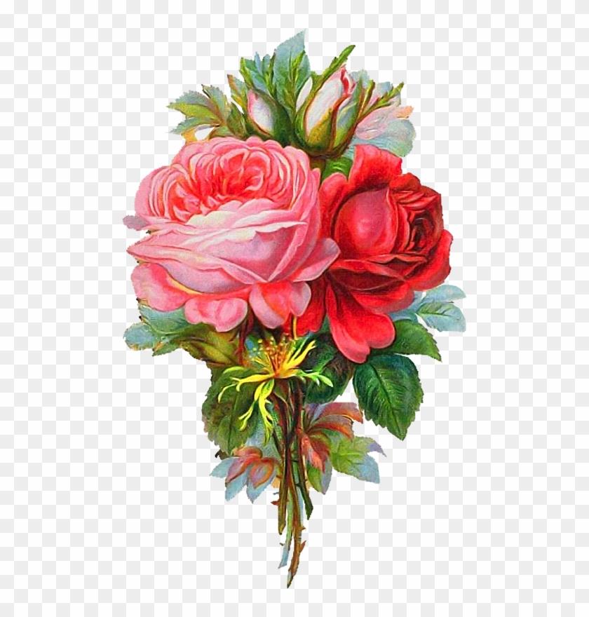 Vintage Prints Clip Art Shelf Victorian Drawings Flowers