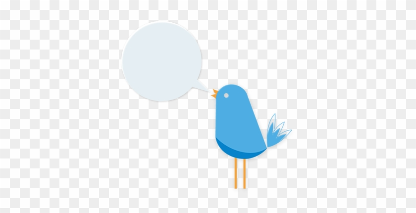 Blue Sky Bird - Mountain Bluebird #352810