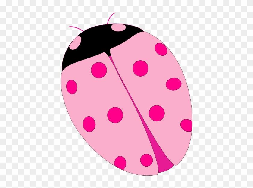 Ladybug Symbolism Amp Ladybug Meaning Ladybug Spirit - Pink