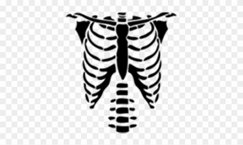 Beautiful Rib Cage Cartoon Skeleton Torso Halloween Png T Shirts