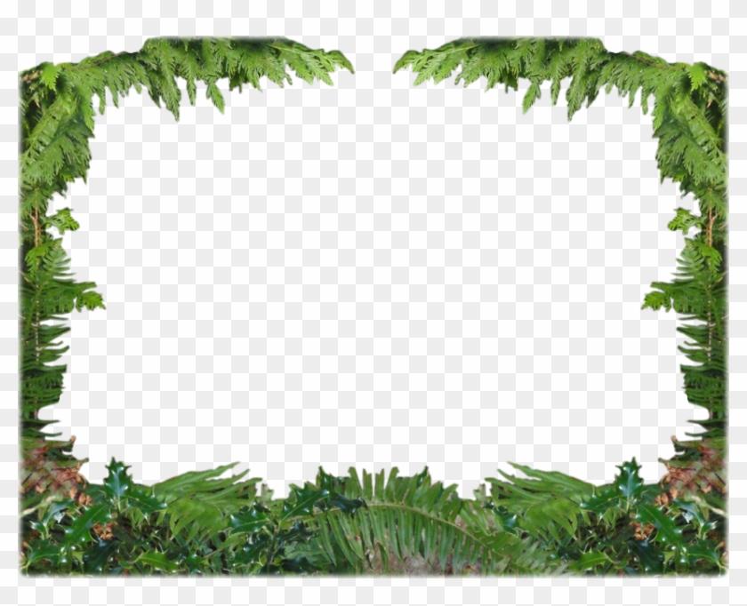 Forest Frame Cliparts - Forest Frame Png - Free Transparent PNG ...