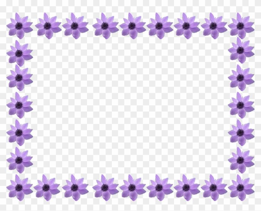 Flowers Border - Summer Flowers Border Transparent #360084