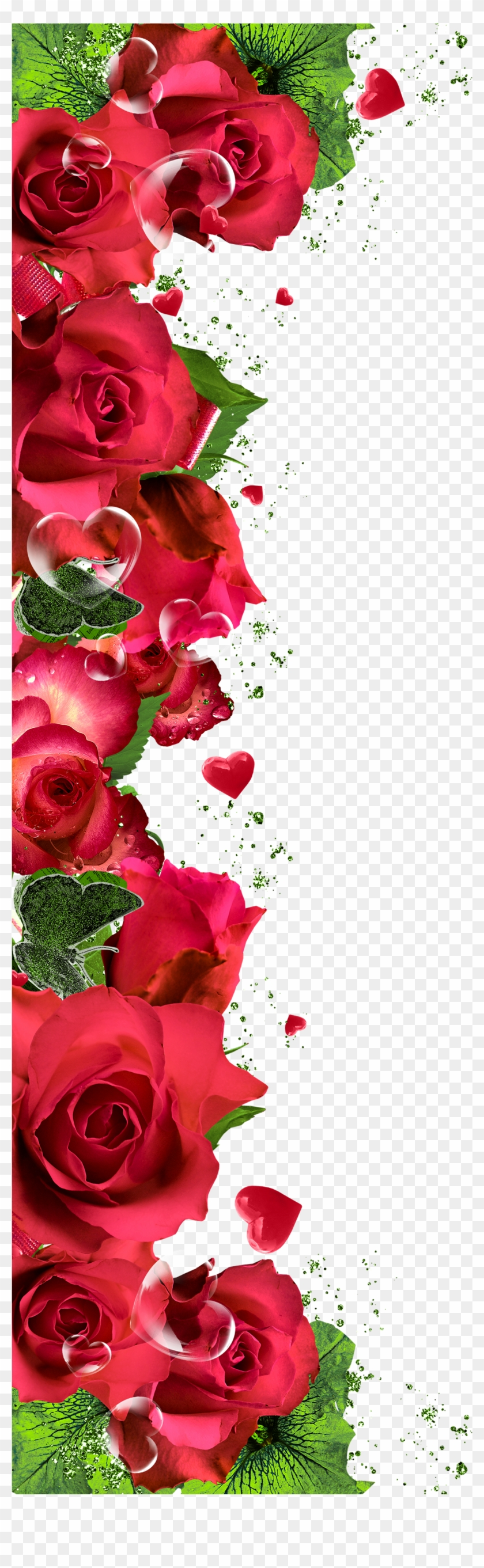 Wallpaper Patterns Backgrounds Iphone Wallpapers Rose Flower Border Png