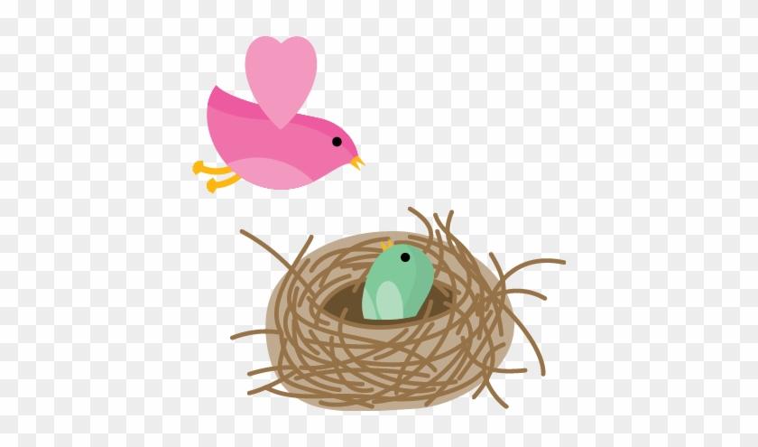 Possible Signs Of Lip/tongue Tie In Babies - Bird Nest #364005